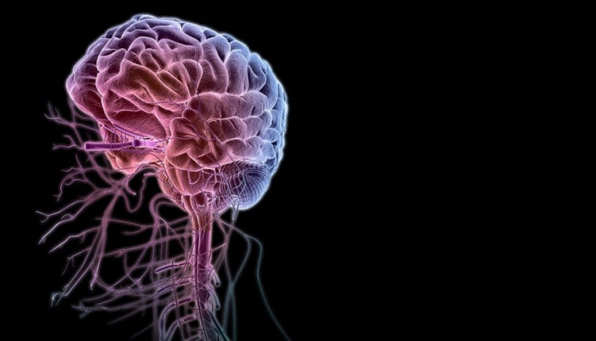 nervos-cerebro-brain-alteracoes-neurologicas-cirurgia-plastica-fabiana-catherino-silicone-doenca-sindrome-asia